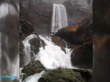 Los múltiples efectos de las persistentes lluvias en la naturaleza