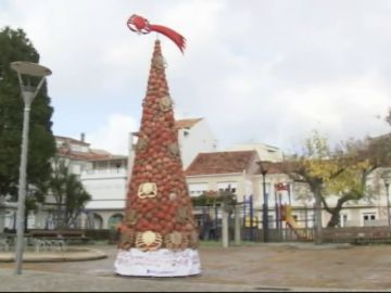 En O Grove (Pontevedra) se puede visitar un árbol de navidad hecho a base de caparazones de centolla