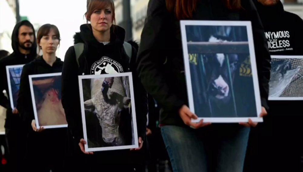 Manifestación por el maltrato animal en los mataderos frente a la Puerta del Sol
