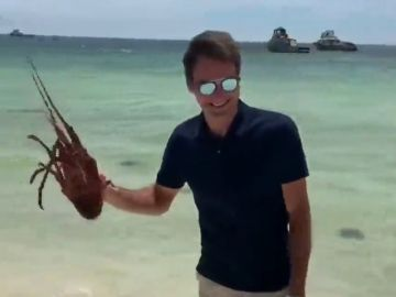 La 'dura batalla' entre Roger Federer y una langosta