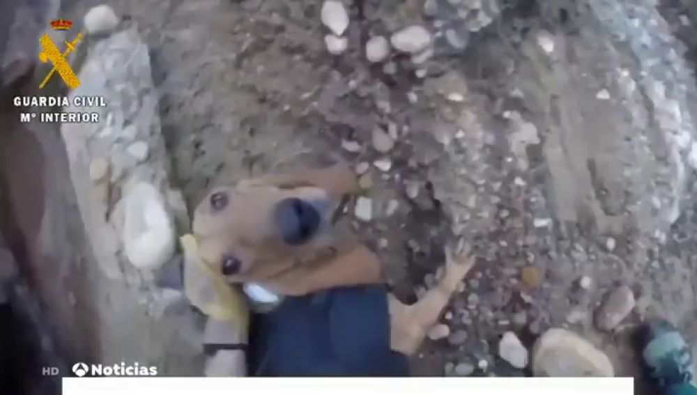 Rescatan a un perro que llevaba tres días atrapado en un barranco en Loporzano