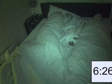 Perro durmiendo con sus dueños