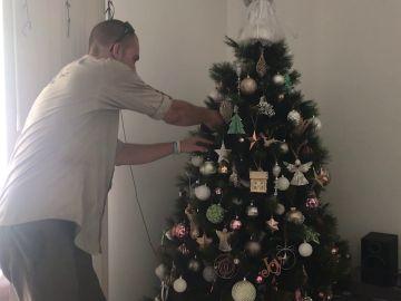 Encuentran una serpiente en el árbol de Navidad
