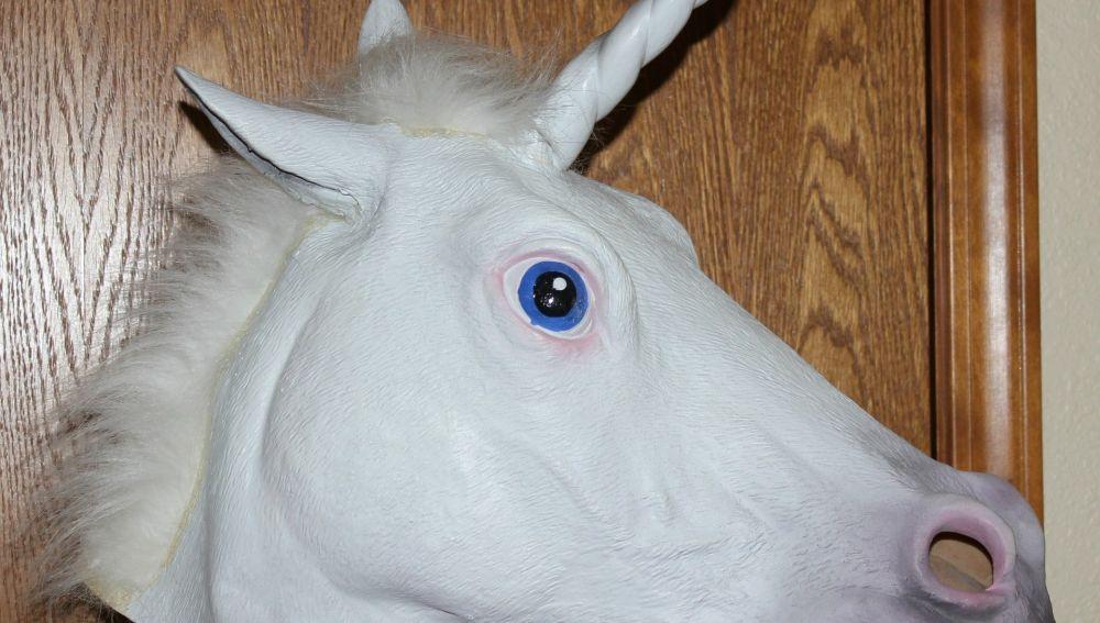 Disfraz de un unicornio.