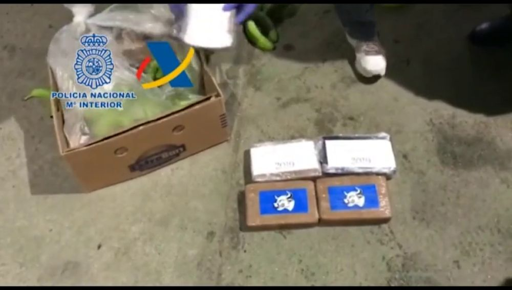 Desarticulada una banda que introducía cocaína a España en cajas de bananas