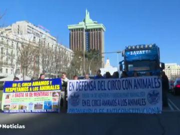 Trabajadores de circo se manifiestan en Madrid en contra de la decisión de Carmena de no autorizar los circos con animales