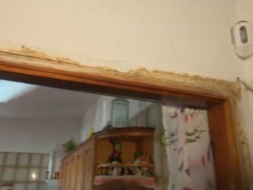 Tiene que cambiar sus muebles de madera por unos de plástico a causa de una plaga de termitas