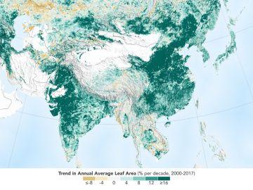 La Tierra es hoy más verde que hace 20 años