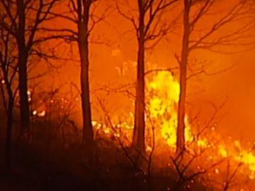 Imagen de un incendio provocado en Cantabria