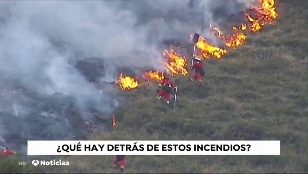 ¿Quién está y cuál es la intención de los que incendian nuestros bosques?