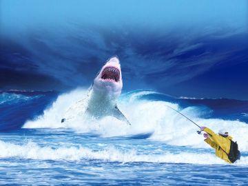 Gran tiburón blanco (Archivo)