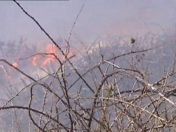 La Guardia Civil investiga las causas y posibles autores que ocasionaron los incendios en Cantabria
