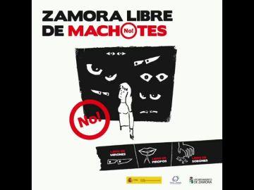 La campaña 'Zamora, libre de machotes' prohíbe los piropos en Carnaval