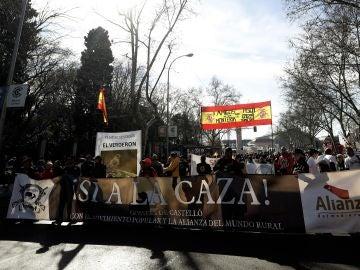 Vista de la manifestación en Madrid
