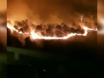 VÍDEO: Graban a pocos metros de distancia el incendio declarado en Muskiz