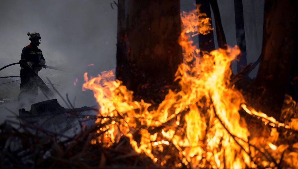 Incendio forestal cerca de la localidad cántabra de San Román.