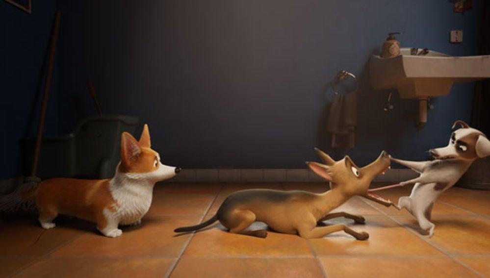cine: Corgi: las mascotas de la reina