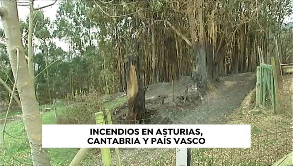 Desciende a 17 el número de incendios activos en Cantabria