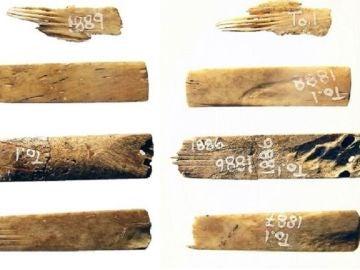Hallan en Tonga un kit de tatuaje de 2.700 años, el más antiguo conocido