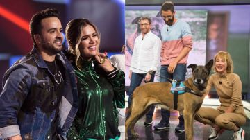 Antena 3, líder del Prime Time con 'El Hormiguero 3.0' y 'La Voz'