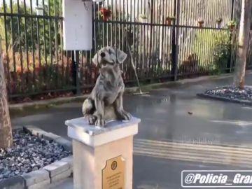 La Policía Local de Granada levanta una estatua en honor a los perros de la Unidad Canina