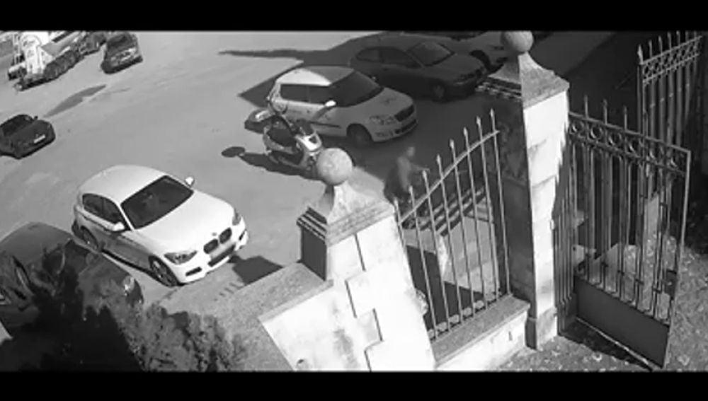 Abandona a su perra atándola a una verja en Palma y huye en su coche a toda prisa