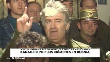 Confirman la cadena perpetua para Karadzic por los crímenes en Bosnia