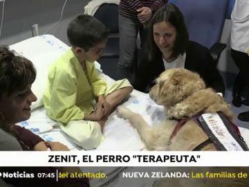 PERRO_TERAPEUTA