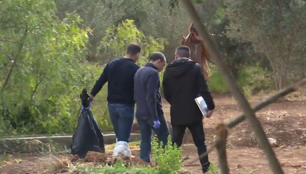 Analizan unos palos y una azada encontrados en la finca donde fueron asesinados los niños de Godella