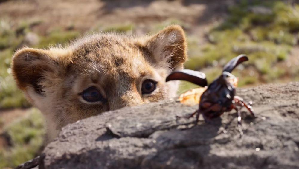 Simba en el remake de 'El Rey León'