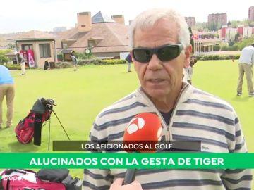 tiger_aficionados