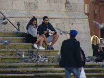 El Ayuntamiento de Cádiz pondrá en marcha unos dispensadores con pienso anticonceptivo para las palomas