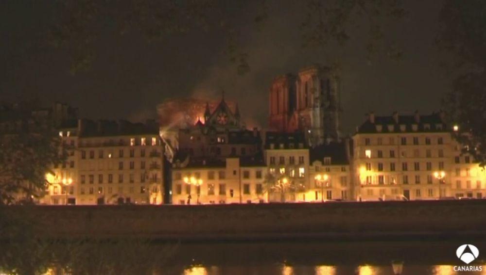 Jonathan, un canario en París que nos habla del incendio