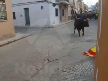 Muere un joven durante un festejo taurino en Xilxes