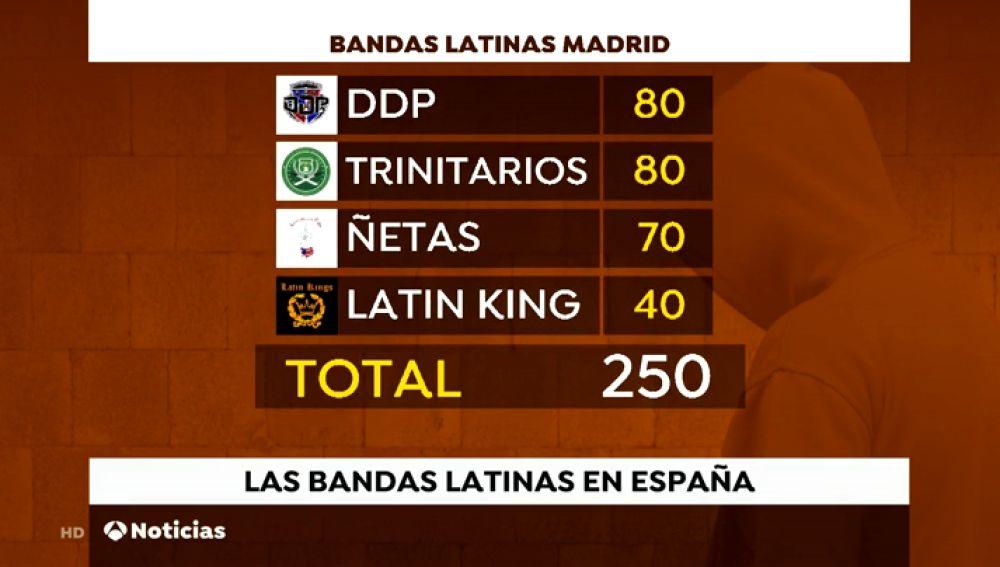 Bandas latinas