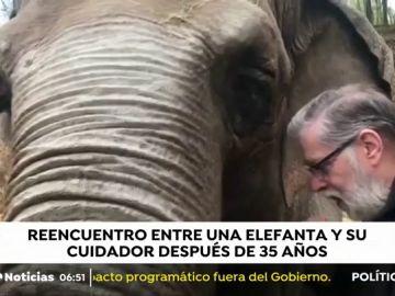 Reencuentro entre una elefanta y su cuidador