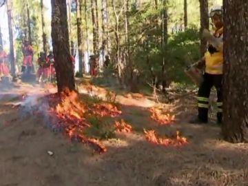 Formación para prevenir incendios forestales