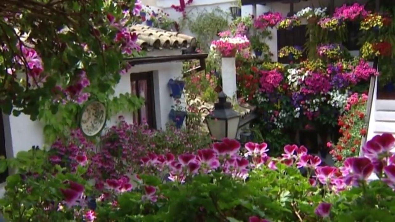 Patios De Córdoba 2019: Localización De Los Recintos Y Las