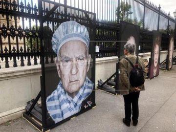 La avenida Ring de Viena se llena de retratos callejeros de supervivientes del Holocausto