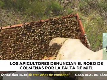 Crisis de la miel en Tenerife