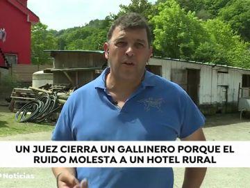 NUEVA GALLINERO