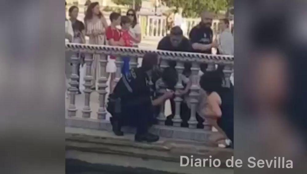 Rescatan a un niño atrapado entre unos barrotes de estanque de Plaza España de Sevilla