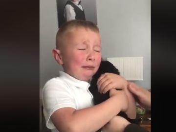 La reacción de un niño al recibir un perro