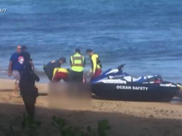 Pánico en las playas de Hawái: muere un nadador atacado por un tiburón