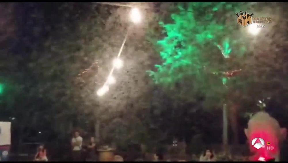 Plaga de mosquitos en Talavera de la Reina