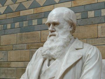 Estatua de Darwin