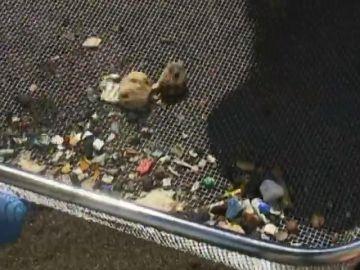 Casi 100 gramos de microplásticos por metro cuadrado en El Porís