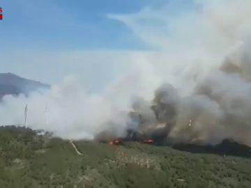 Un incendio quema más de 60 hectáreas en Perelló