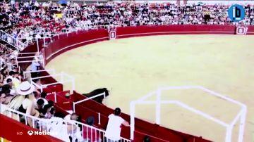REEMPLAZO   Un toro mata a un torilero en la plaza de toros de Benavente