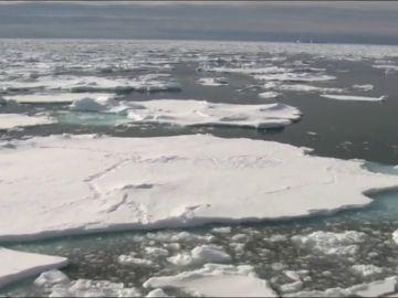 El hielo marino de la Antártida baja al mínimo histórico en 40 años